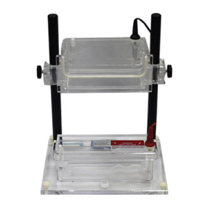 CBS Scientific ASG-250 Vertical Gel System